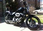 Photo of a 2009 Harley-Davidson® XL 1200N Sportster 1200 Nightster™