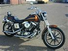 Photo of a 1984 Harley-Davidson® FXSB Low Rider® Shovelhead