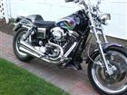 Photo of a 1993 Harley-Davidson® FXRS Low Rider®