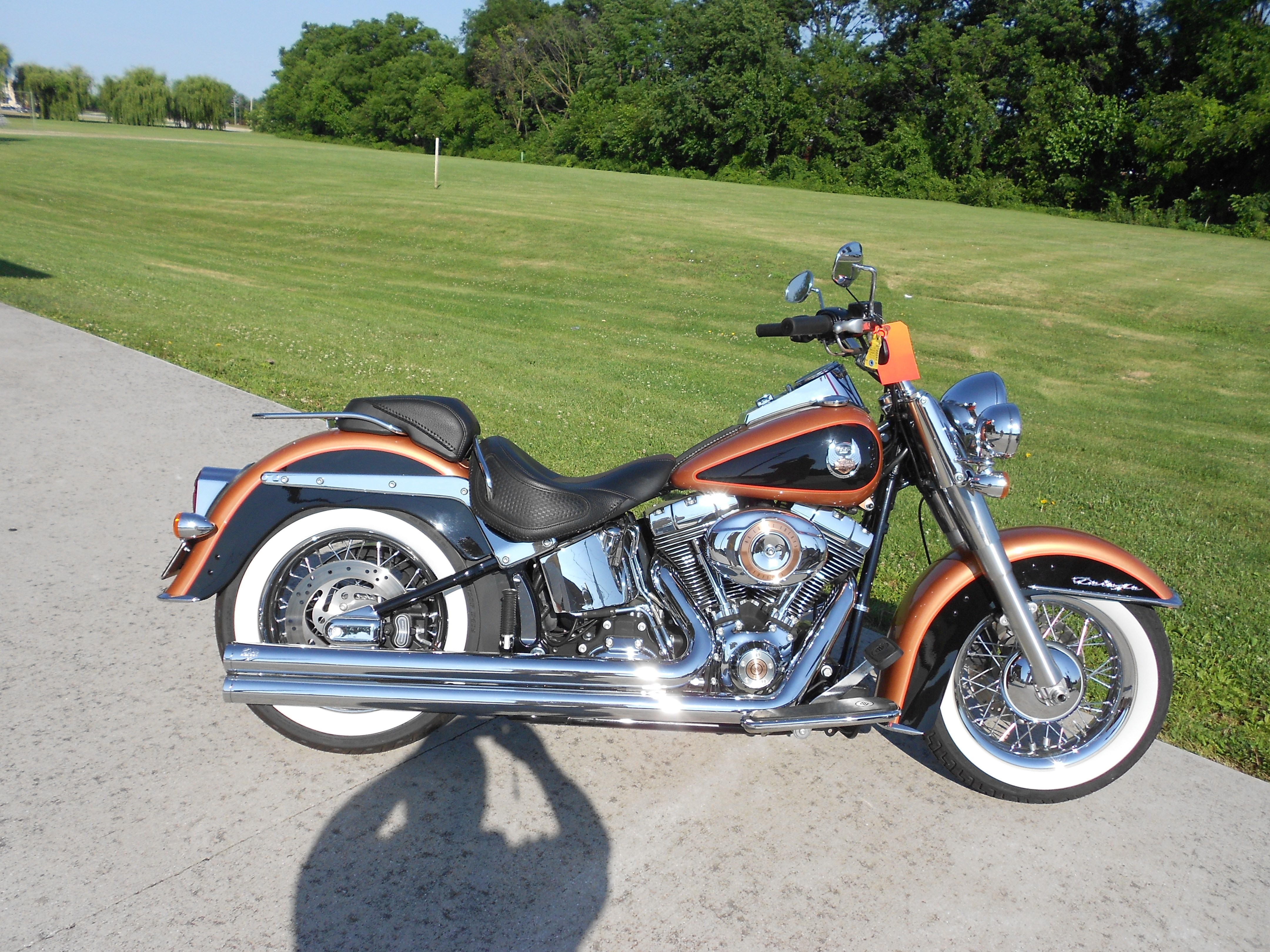 2008 Harley-Davidson® FLSTN-ANV Softail