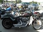 Used 2007 Harley-Davidson® Softail® Standard